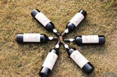 选择什么品牌发展葡萄酒加盟生意