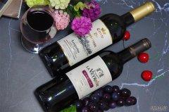 选择什么样的品牌做进口葡萄酒生意好