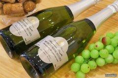 葡萄酒代理批发生意有没有市场
