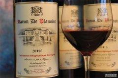进口红酒生意要花费多少资金